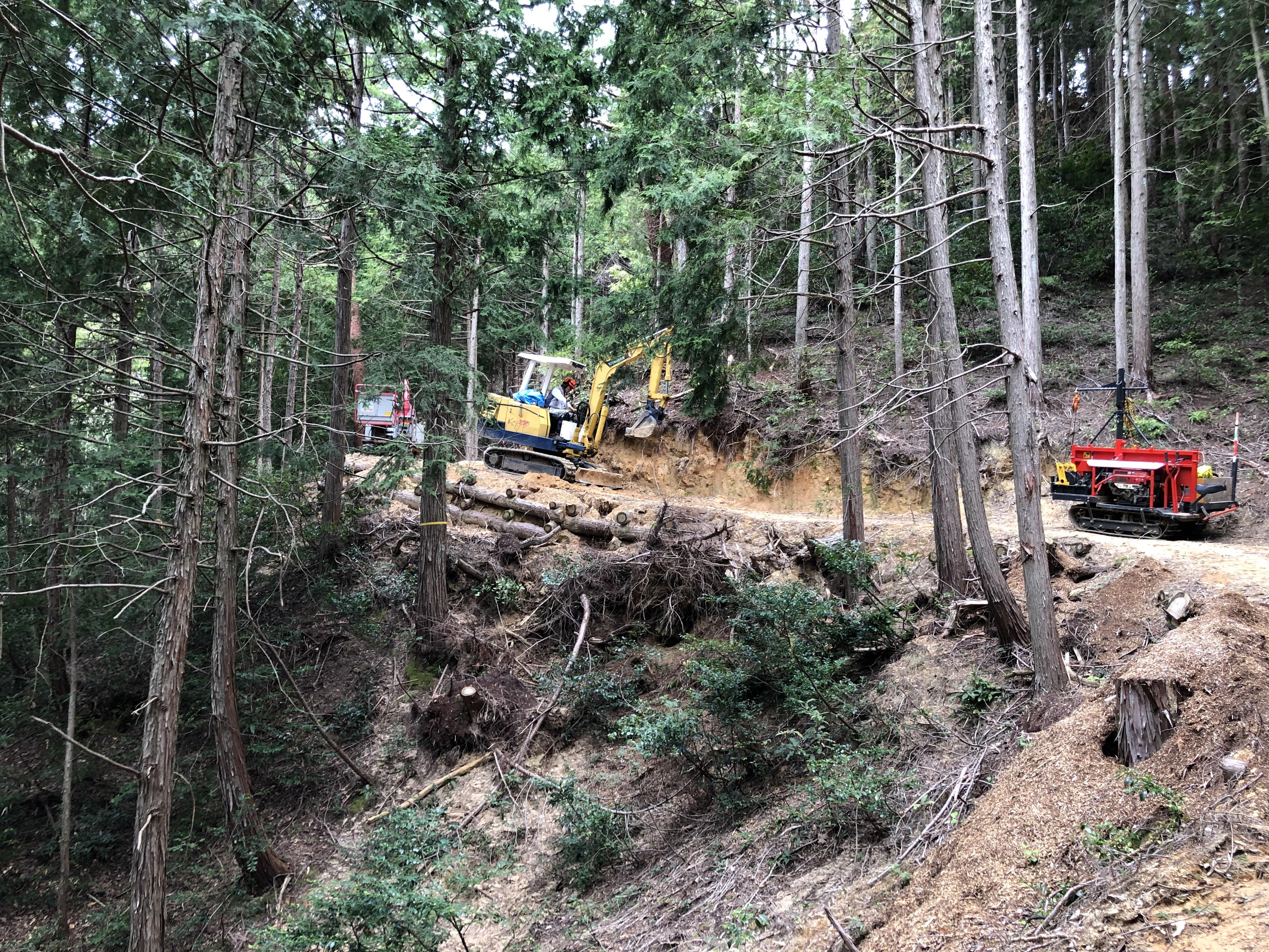 山門水源の森 保全活動 環境改善 事業の活動報告写真